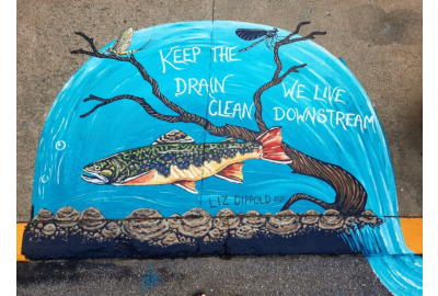 'Up Stream' project brings bold colors — and message — to Elk Country