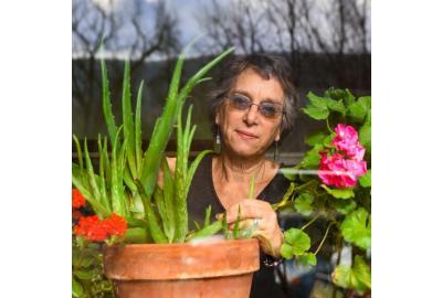 Growing a Medicinal Garden in the Pennsylvania Wilds