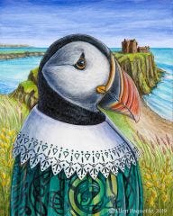 MacPuffin Atlantic puffin animal portrait art print