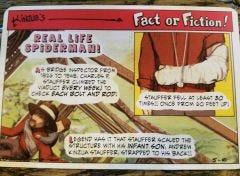 Fact or Fiction Post Cards - Real Life Spiderman