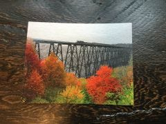 Black and White Train with Fall Foliage Eagle Eye Photography Post Card
