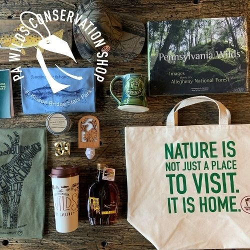 PA Wilds Conservation Shop at Kinzua Bridge State Park